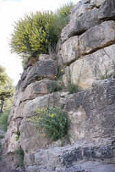 Contrafuerte de la muralla de Puntal dels Llops (Olocau) (Fotografía Consuelo Mata, 2001)