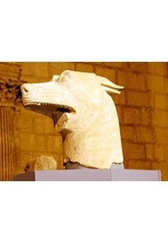 Cabeza de lobo de El Pajarillo (Huelma)