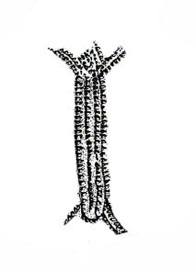 Antropomorfo impreso sobre recipiente de Cova de 'Or (Beniarrés)